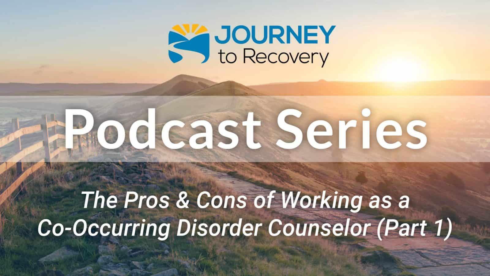 The Pros and Cons of Working as a Co-Occurring Disorder Counselor (Part 1)