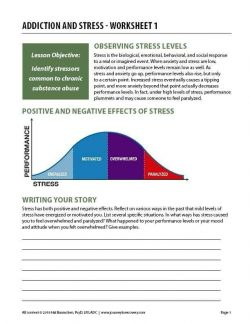 Addiction and Stress – Worksheet 1 (COD)