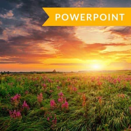 Developing Hope (PowerPoint Presentation)